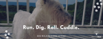 Good Tails Dog Walking and Pet Services